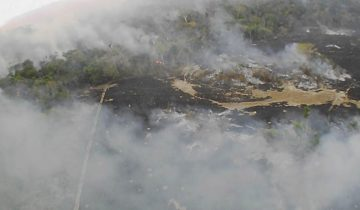 Des incendies ravagent l'Amazonie