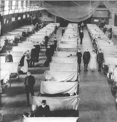 Grippe promenée conduit souvent au cimetière 1