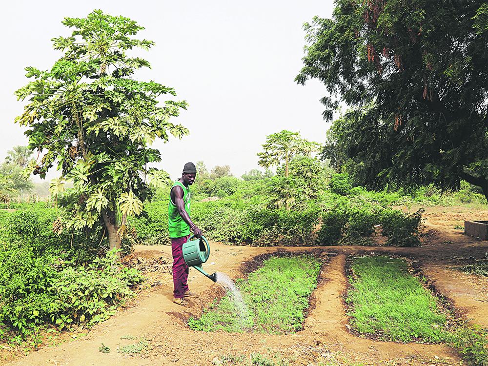 Les germes d'une autre agriculture 1